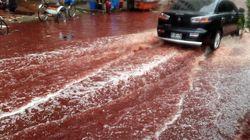 Μπαγκλαντές: Ποτάμια από αίμα στους δρόμους της Ντάκα μετά από θυσίες