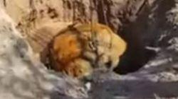 Μετεωρίτης 4.000 ετών και 31 τόνων βρέθηκε στην