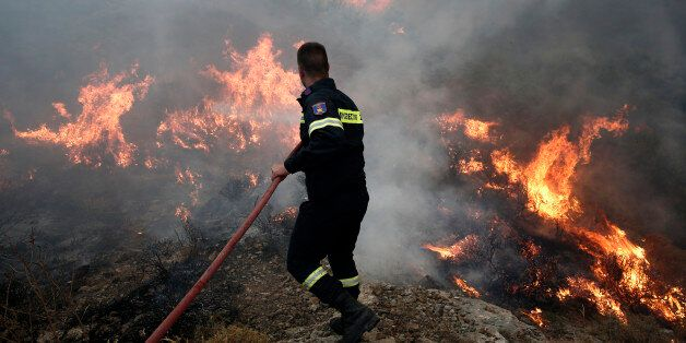 A firefighter tries to extinguish a forest fire near Keratea town, southeast of Athens July 12, 2014....