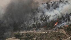 Θάσος: Ανεξέλεγκτη παραμένει η μεγάλη πυρκαγιά. Εκκενώθηκαν δυο μοναστήρια. Χωρίς ρεύμα πολλές