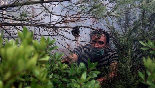 35 φωτογραφίες για τα τρία μερόνυχτα που οι πυρκαγιές καταβροχθίζουν την ομορφιά της καταπράσινης