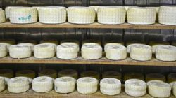 Αφιέρωμα στην Κρήτη: Γιατί βρίσκεται στην υψηλότερη θέση κατανάλωσης τυριού