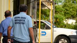 Κουνούπια φορείς του Ζίκα εντοπίστηκαν και στο Μαϊάμι. Τι συστήνουν οι αμερικανές υγειονομικές