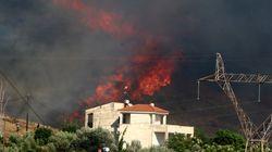 Μαίνεται η μάχη με τις φλόγες στην Κάρυστο Ευβοίας. Ζημιές σε σπίτι στο Πόρτο