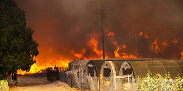 PHELAN, CA - AUGUST 16, 2016: The Blue Cut Fire roars out of control behind green houses along Highway...