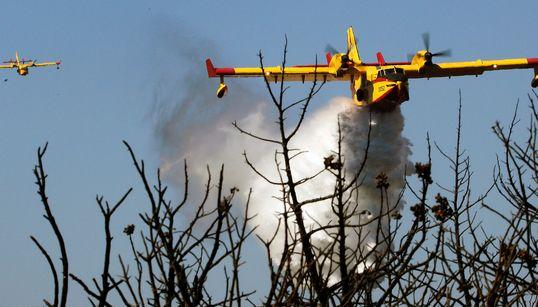 Τα γραφήματα των πυρκαγιών: Στοιχεία για τις δασικές φωτιές από το 2000 έως το