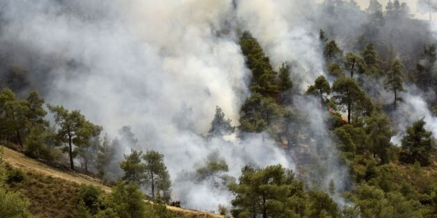 Smoke billows from a forest in the Cypriot village of Evrychou in the Troodos mountain area on June 20,...