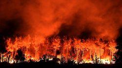 Ανεξέλεγκτες οι πυρκαγιές στη νότια Γαλλία. 4 τραυματίες πυροσβέστες. Ακυρώσεις πτήσεων από