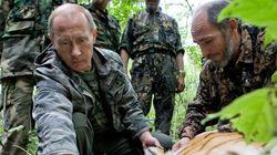 Τίγρης που απελευθέρωσε ο Πούτιν στη Σιβηρία κατέληξε στην