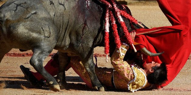 Spanish bullfighter Francisco Marco is tossed by a bull during a bullfight at the San Fermin festival...