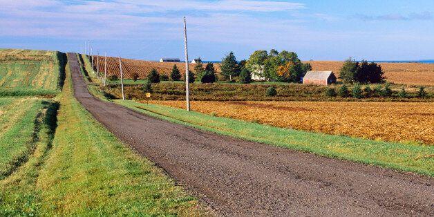 Rural road along farms in Hampton, Prince Edward Island,