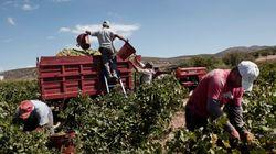 Tι συμβαίνει επιτέλους με τις ελληνικές εξαγωγές; Γιατί η Κομισιόν βλέπει αύξηση 30% τα επόμενα