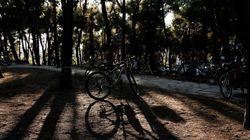 Δράκος με ποδήλατο έξω από σχολεία: «Είμαι φίλος με τον μπαμπά σου. Με