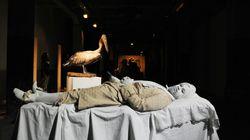 Exhibit B: Ένας ανθρώπινος «ζωολογικός κήπος» στην οδό