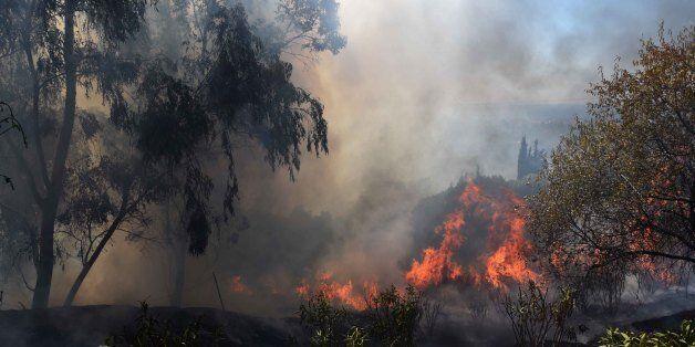 Υπό μερικό έλεγχο έπειτα από ένα 24ωρο η μεγάλη πυρκαγιά στο δήμο