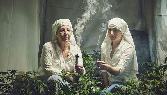 Οι «αδελφές της κοιλάδας» που καλλιεργούν μαριχουάνας για φαρμακευτικούς
