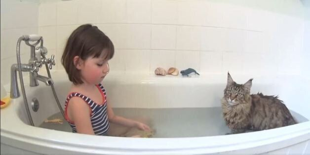 Μία γάτα που δεν φοβάται το νερό βοήθησε κοριτσάκι με αυτισμό να