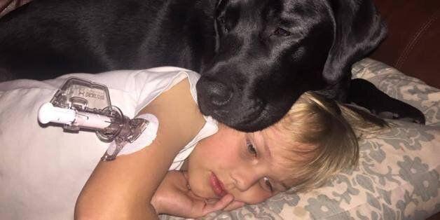 Επτάχρονος με διαβήτη σώθηκε από τον πιστό του τετράποδο