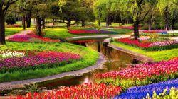 Οι 10 πανέμορφοι ευρωπαϊκοί κήποι που πρέπει να επισκεφθείτε στη ζωή