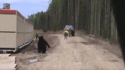 Επική φάρσα: Άνδρας ντύνεται αρκούδα και κάνει τους συναδέλφους τους να φεύγουν