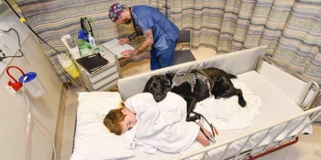 Ο συγκινητικός δεσμός ενός αυτιστικού αγοριού με τον σκύλο