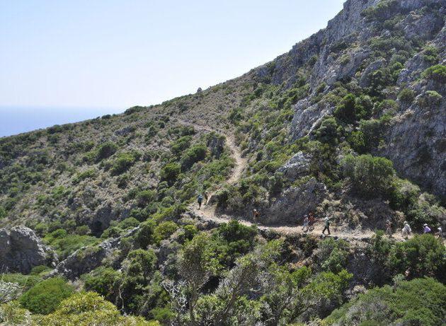 Paths of Greece: Μπορούν τα παραδοσιακά μονοπάτια της Ελλάδας να γίνουν πόλος έλξης