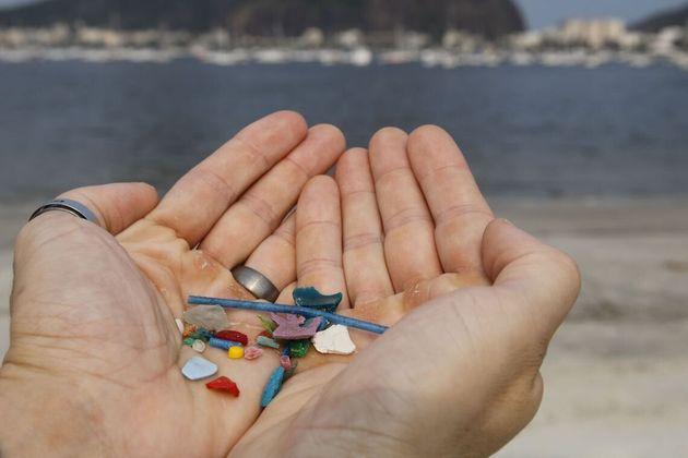 O biólogo Jonas Leite, doutor em oceanografia, presidente do Instituto Meros do Brasil, mostra microplásticos...