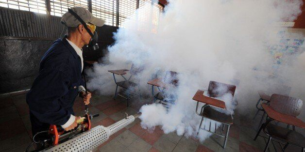 Health ministry personnel fumigate against the Aedes aegypti mosquito, vector of the dengue, Chikungunya...