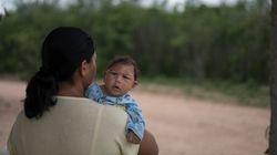 Stratfor: Ποιες θα είναι οι πραγματικές επιπτώσεις του ιού Ζίκα στον