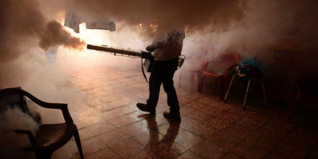 TOPSHOT - A Health Ministry employee fumigates a home against the Aedes aegypti mosquito to prevent the...