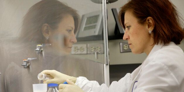Quality control manager Nina Kotlyarova checks samples for unwanted bacteria as part of the process for...
