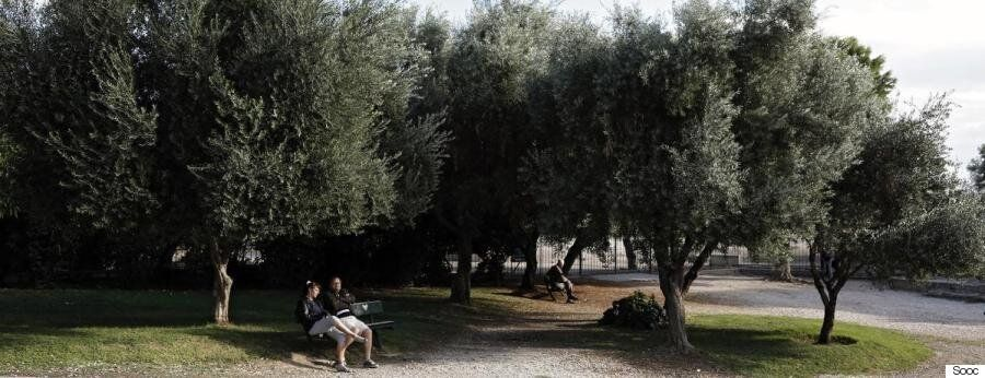 Κλιματική αλλαγή και Ελλάδα: Πώς επηρεάζεται η χώρα μας, τι περιμένουμε στο