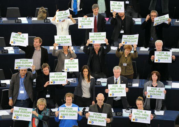 Το κρίσιμο 2016 για την ευρωπαϊκή μάχη κατά των μεταλλαγμένων. Η στάση του Ευρωκοινοβουλίου, οι πιέσεις...