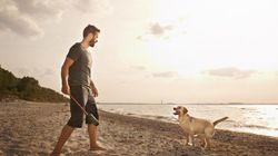 Οι άντρες που έχουν σκύλο είναι φοβερά σέξι (και η επιστήμη το