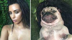 Η Kim Kardashian σε μορφή σκύλου, ένα μαγικό κουτί που λέει τον καιρό και ένα αεροπλάνο έτοιμο προς