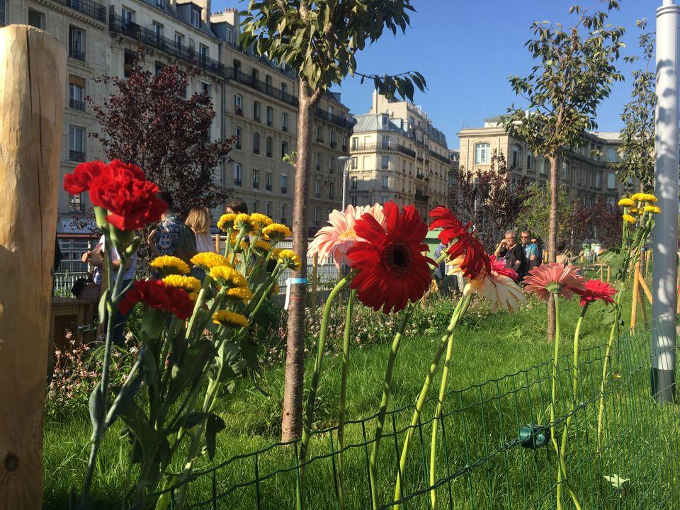 """Jardim Marielle Franco é inaugurado em Paris: """"Minha mãe sempre falava que tínhamos que ser as flores..."""