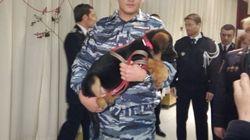 Οι Ρώσοι έκαναν δώρο στη Γαλλία τον μικρό Dobrynya που θα αντικαταστήσει τον