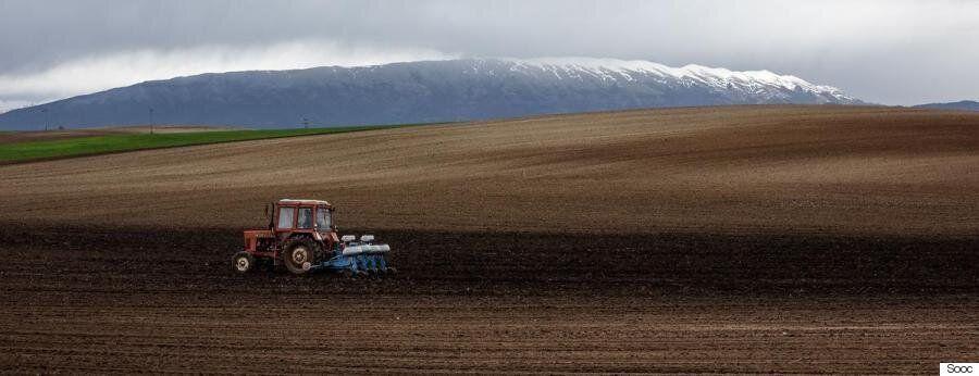 Να είναι κανείς αγρότης σήμερα ή να μην είναι; Νέοι αγρότες μιλούν στην HuffPost Greece για τα νέα μέτρα...