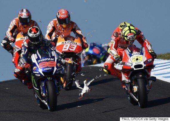 Απίθανο ατύχημα με γλάρο στο MotoGP της