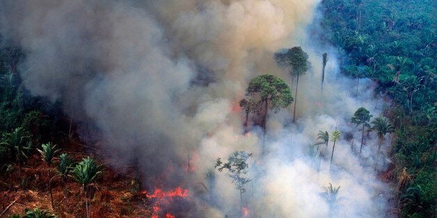 Aerial view of rainforest being burned to clear land to make pasture for cattle ranching and for growing...