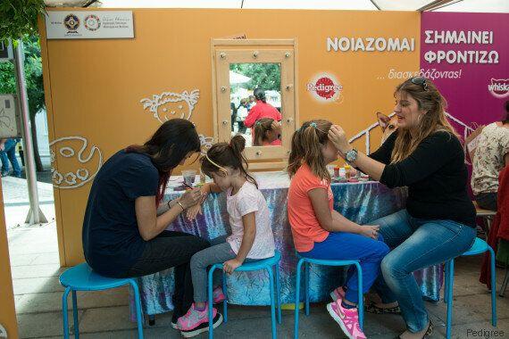 Τα ζώα συντροφιάς χωρίς σπίτι του Δήμου Αθηναίων γιόρτασαν την Παγκόσμια Ημέρα Ζώων με τον καλύτερο
