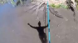 Δείτε τι κάνει! Ισορροπεί σε τεντωμένο σκοινί πάνω από πεινασμένους