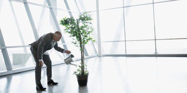 Το Περιβαλλοντικό Κεφάλαιο της