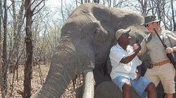 Γερμανός πλήρωσε 60.000 δολάρια και σκότωσε το μεγαλύτερο ελέφαντα της