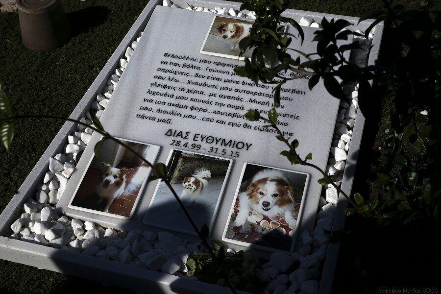 Ένα πρωινό σε ένα νεκροταφείο κατοικίδιων ζώων: Παιχνίδια, κεριά, αγάλματα και αστείρευτη