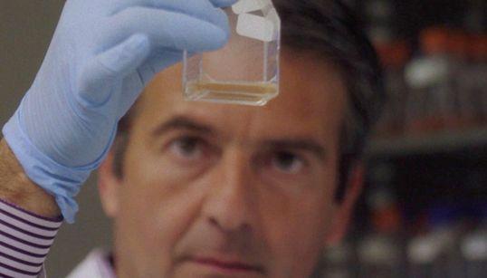 Κωνσταντίνος Στρατάκης: O ερευνητής από το Γαλαξίδι που ανακάλυψε το γονίδιο του