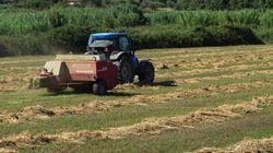 Οι μεγάλοι χαμένοι των νέων μέτρων: Αγρότες, ελεύθεροι επαγγελματίες, συνταξιούχοι και