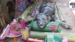 Το παράξενο πλάσμα με σώμα ταύρου και κεφάλι κροκόδειλου που βρέθηκε στην