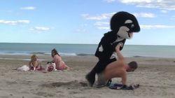 O Remi Gaillard ντύνεται δελφίνι και σαρώνει στο