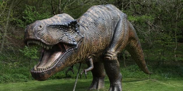 Dinosaur AdventureWeston Park, Lenwade, Norfolk, NR9 5JWGet ready for a great day, armed with your Adventurers'...